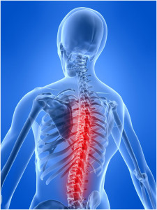 image of spine, back and neck
